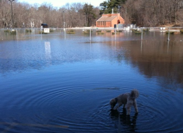 Lead Gen Flood
